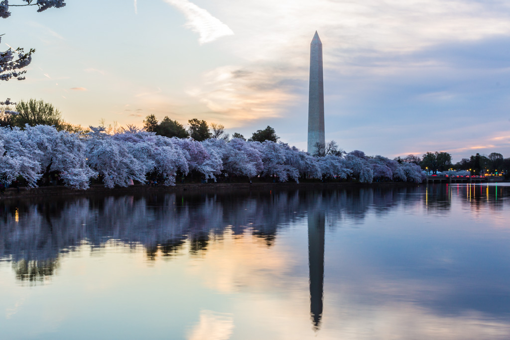 Washington Momument after Sunrise