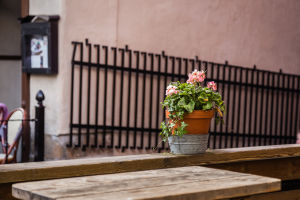 Cafes in Gamla Stan